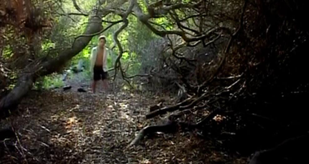 4321 bosque